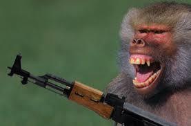 mono-con-fusil